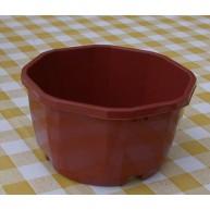Décor 12cm Cactus bowl