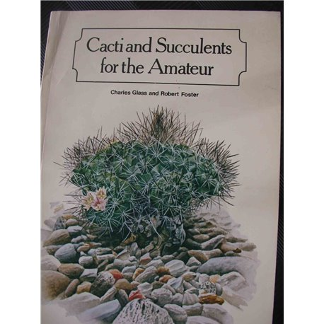 Cacti and Succulents for the Amateur