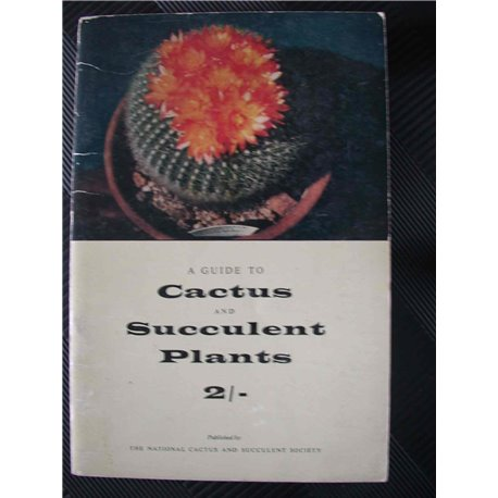 A Guide to Cactus and Succulent Plants